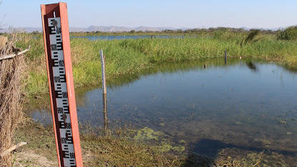 GROUNDWATER LEVELS AT 10-YEAR LOW, WARNS WARMA