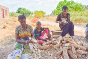ZAMBIAN BREWERIES' SUPPORT FOR LOCAL FARMERS WITHSTANDS MARKET CHALLENGES
