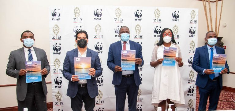 Private sector investment key to reducing financial gap in water sector – WWF.