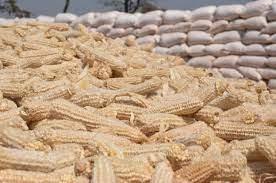 Bumper harvest not enough to fight hunger and malnutrition – CSO-SUN